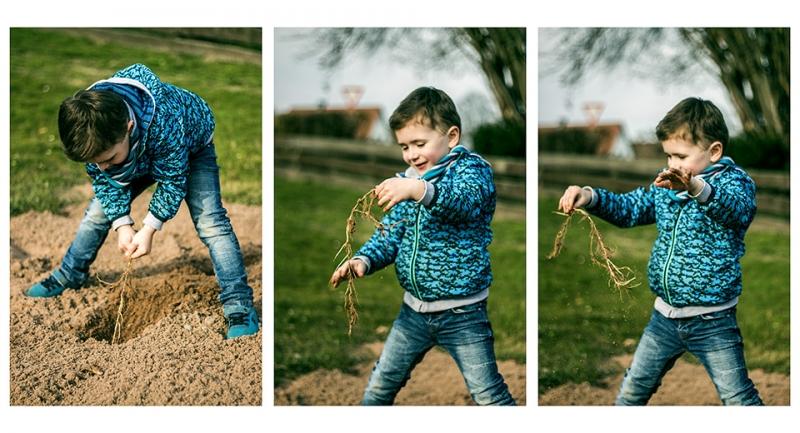 Kinderfotografie: 3er-Reige von Fotografien eines Jungen, der eine Wurzel aus dem Boden zieht