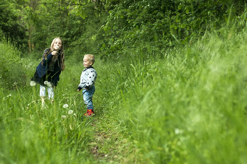 Kinderfotografie: Schwester und Bruder stehen in hohem Gras und das Mädchen pustet eine Pusteblume. Ihr Bruder guckt zu und freut sich.
