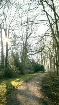 Grohnder Schlosspark am Morgen, kostenloses Smartphone Wallpaper von Blickwinkel Fotografie Vanessa von Wieding in Emmerthal bei Hameln